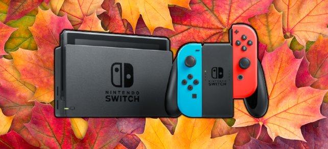 Laut Brancheninsidern kommt die Nintendo Switch Pro früher als gedacht. (Bildquelle: Getty Images / Macrowildlife, Nintendo)