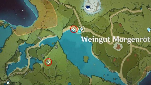 Die Karte zeigt euch zwei Eisnebelblumen-Fundorte in der Nähe des Weinguts Morgenröte.