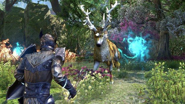 The Elder Scrolls Online: Zeitfresser und Marktplatz für Mikrotransaktionen. Diese Aspekte treffen auf viele MMOs zu und können mitunter zum Problem werden.