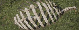 Bilderstrecken: Fundorte aller Saurierknochen