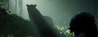 Vorschauen: Hält der Dschungel, was die Entwickler versprechen?