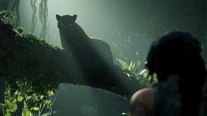 Hält der Dschungel, was die Entwickler versprechen?