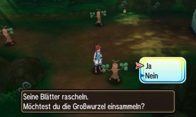 """Beim Pokémon Mogelbaum besteht seit jeher Verwechslungsgefahr. Klaut ihr dem falschen """"Baum"""" eine Großwurzel, erlebt ihr vielleicht eine Überraschung."""