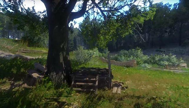 Am großen Baum in der Mitte von Pribyslawitz könnt ihr richten und euren Einfluss als Vogt ausspielen.