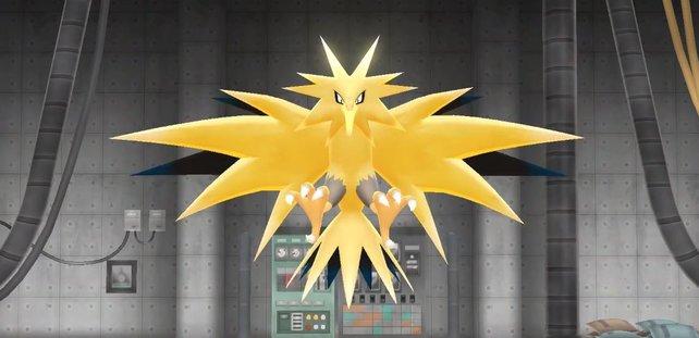 Die legendären Pokémon zappen sehr viel und lassen sich nur schwer fangen.