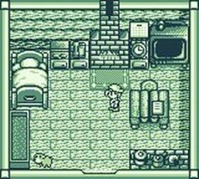 Harvest Moon GB stammt bereits von Victor Interactive Software statt von Amccus, das in seinem einjährigen Bestehen ganze zwei Spiele auf den Markt gebracht hat: Harvest Moon und Monstania (Super Famicom)