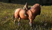 Equus: Fundorte auf allen Karten