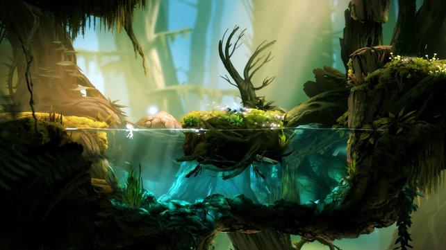 Es gibt kaum ein Spiel, das so stimmig und schön ist, wie Ori and the Blind Forest.