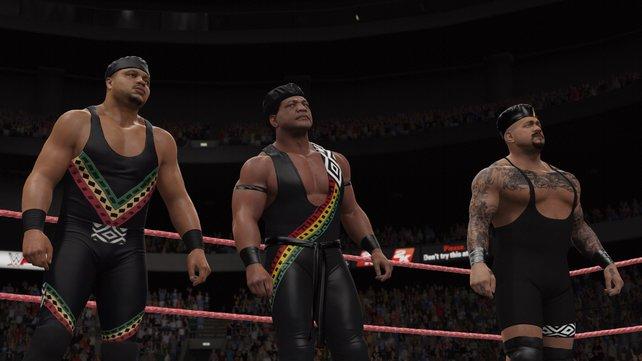 """Im Ring treffen nicht nur zwei, sondern auch drei, vier, sechs oder bis zu 30 Kontrahenten (""""Royal Rumble"""") aufeinander."""