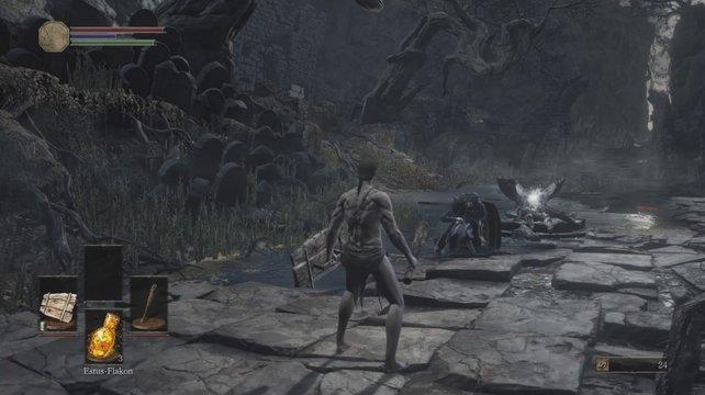 Vor dem Brunnen erwartet euch ein angriffslustiger Feind.