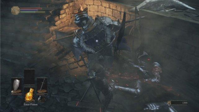 Der Geflügelte Ritter kann natürlich nicht fliegen.