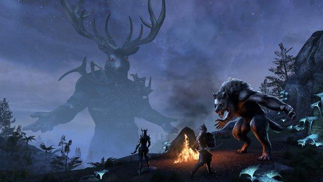 The Elder Scrolls Online - Summerset: Fühlt sich bald alles wie ein MMO an? Games as a Service geht stark in diese Richtung.
