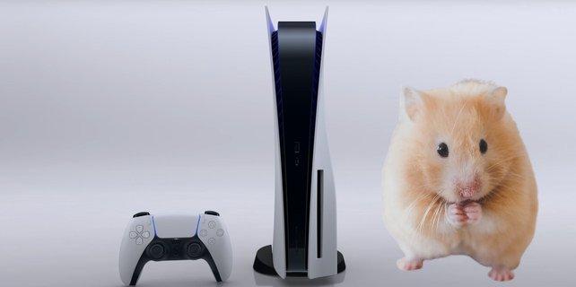 Ihr könnt nicht so viele PS5 kaufen, wie ihr wollt.