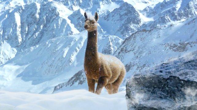 Weil mit Lamas nun mal alles besser wird, gibt es auch welche in Just Cause 4.