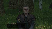 Mount & Blade 2: Bannerlord: Begleiter-Guide und beste Companions