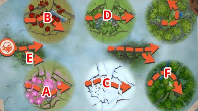 Wald-Karte mit allen Routen.