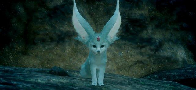 Karfunkel sieht aus wie ein niedlicher Fuchs und unterstützt euch ab und zu im Kampf.