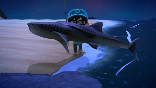 Haie in Animal Crossing? Ein ulkiger Anblick.
