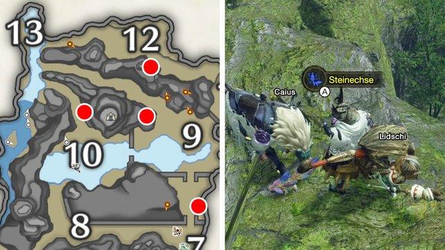 Die Karte zeigt euch vier Steinechsen-Fundorte in den Heiligen Ruinen. Am einfachsten ist der Ort nördlich von Abschnitt 7 zu erreichen.