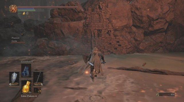 Schwelender See: Hinter dieser zerbrechlichen Wand findet ihr den Gefleckten Steinplattenring.