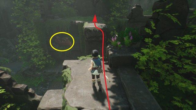 Springt über den Abgrund und untersucht den Innenraum der Ruine. Wendet dann die Rott auf die Bretter (gelb) an.