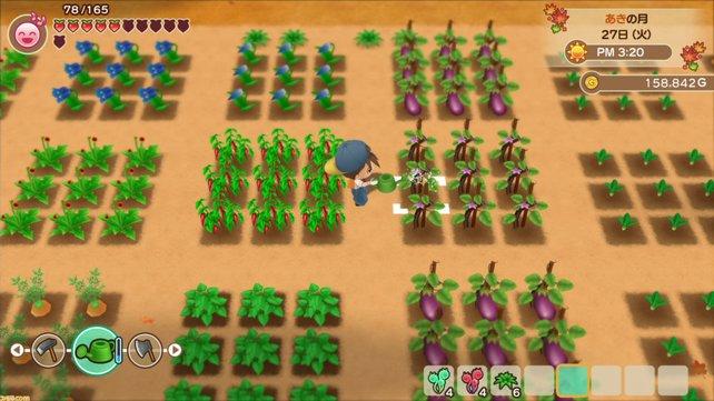 Auch im Remake wird es wieder eure Aufgabe sein, eure Felder zu bestellen.