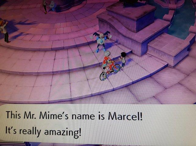 Dieses besondere Pantimos trägt den Namen Marcel - das hat einen bestimmten Grund.