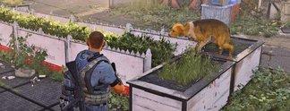 The Division 2: Spieler wollen Möglichkeit zur Hunderettung