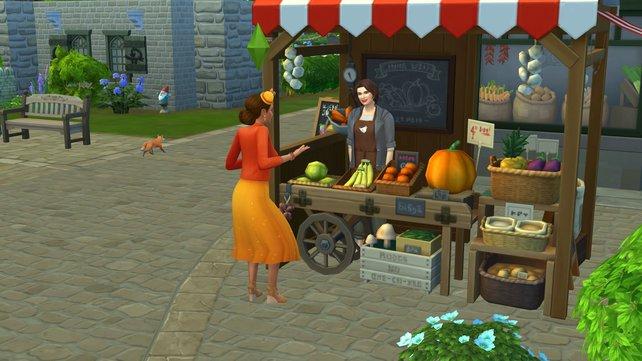 Bei dieser netten Dame könnt ihr in Finchwick eure Lebensmittel einkaufen. Aber passt auf, dass euch der Fuchs dabei nicht erwischt!
