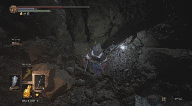 Drachenreiter-Bogen: Nach der zweiten Leiter lasst ihr euch auf diese Ebene fallen.