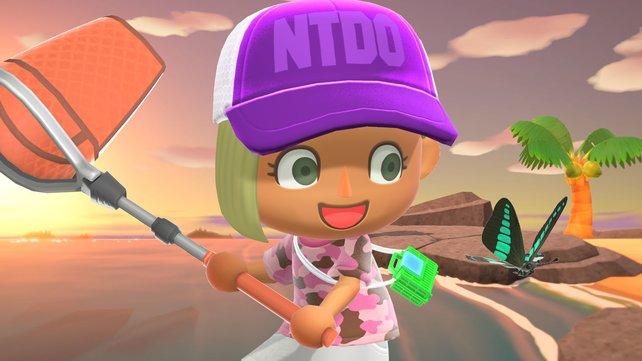 Im Juni werden euch einige Fische und Käfer in Animal Crossing : New Horizons verlassen.