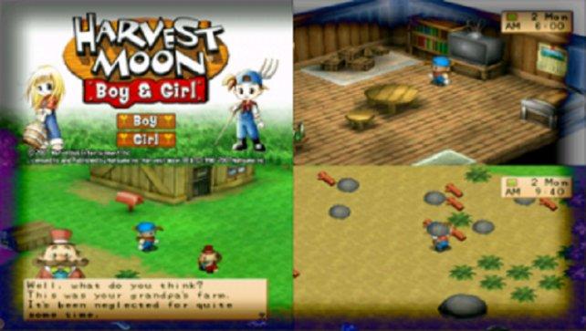 Harvest Moon Boy & Girl ist schlicht eine Kombination aus Back to Nature und dessen Girl-Fassung, erschienen 2005 für die PSP.