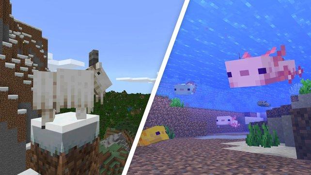 Ihr solltet die neuen Ziegen in Minecraft nicht unterschätzen.