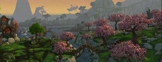 Panorama: World of Warcraft rettet krankem Spieler das Leben