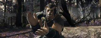 Final Fantasy 14: Neue Rassen haben feste Geschlechter, Fans sind unglücklich