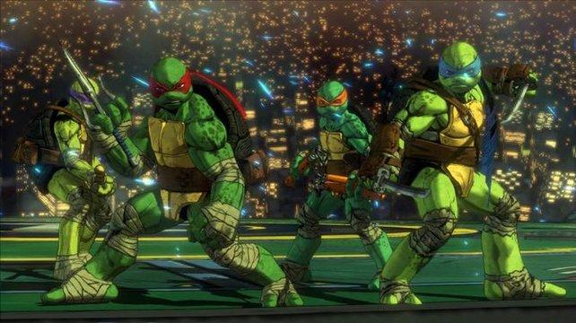 Die wohl vier bekanntesten Schildkröten der Welt
