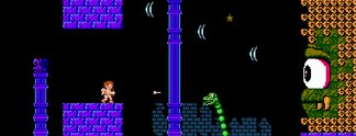 Panorama: Mann verkauft NES-Spiel für 9.000 Dollar