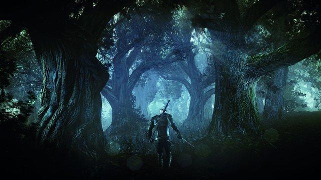 Wem oder was ist Geralt da wieder auf der Spur?