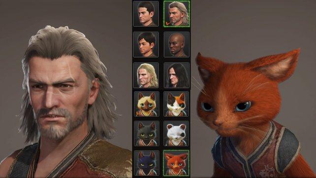 Die Anpassungsoptionen für eure Charaktere waren in der Beta im Vergleich zum fertigen Spiel stark begrenzt, aber Mensch und Palico sehen dennoch schick aus.