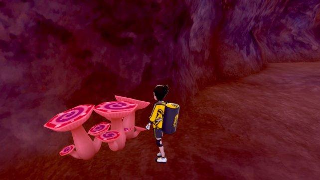 So sehen die Dyna-Pilze in Pokémon Schwert & Schild: Die Insel der Rüstung aus.