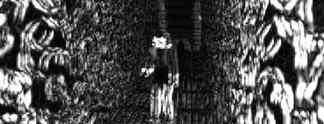 Der Aufreger der Woche: Darknet-Horrorspiel geht an alle Grenzen