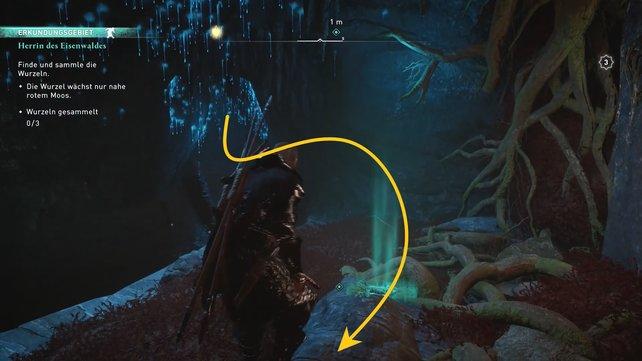 Rutscht nach der ersten Wurzel den Schacht hinunter, sammelt die zweite auf und folgt dann dem Wasser.