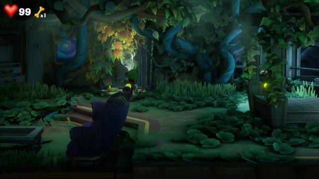Hinter dem Efeu findet ihr die Tür, um zum nächsten Raum zu gelangen.