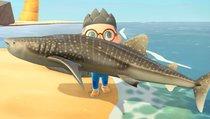 Animal Crossing: New Horizons: Alle Fische und ihre Preise