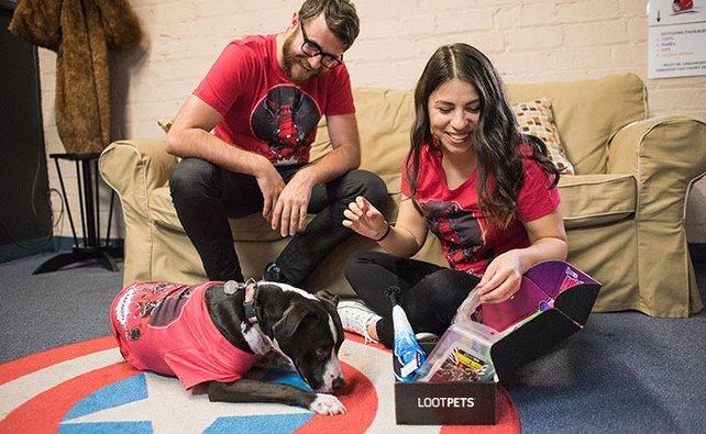 In den Loot Crates für Hunde sind Leckerlis, Spielzeuge, Accessoires und ein Anhänger fürs Halsband.