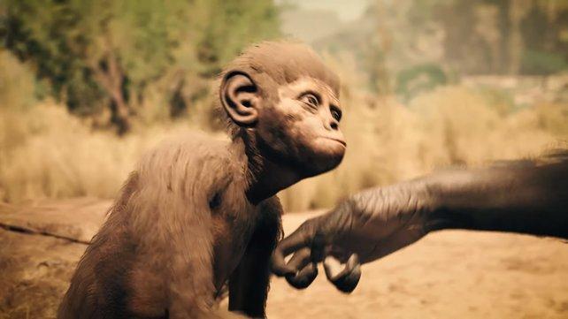 Babys werden in Ancestors: The Humankind Odyssey auf dem Rücken transportiert und müssen von euch um jeden Preis verteidigt werden.
