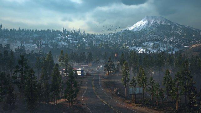 Days Gone lässt euch im Nordwesten der USA spielen. Die Open World lädt zum Erkunden ein.