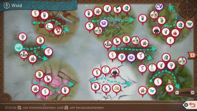 """Karte mit Pokémon-Fundorten auf der Strecke """"Wald""""."""