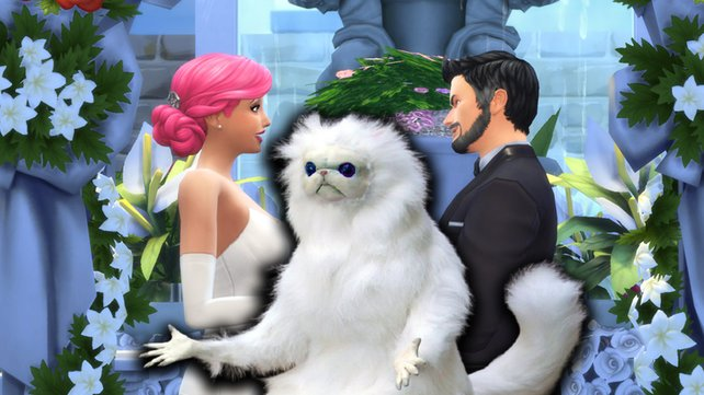 Dieser Hochzeitsfotograf in Die Sims 4 entpuppt sich leider als der schlechteste der Welt.