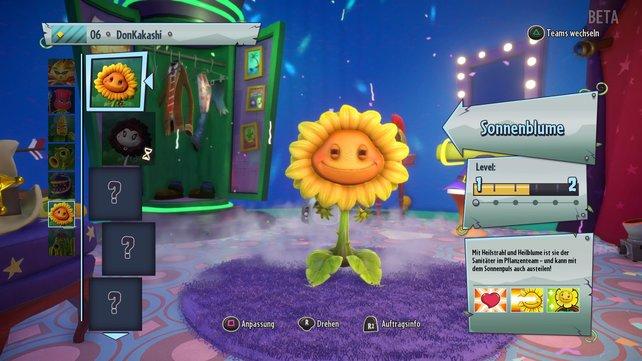 Wenig geschlafen und trotzdem gut drauf? Die Sonnenblume zeigt euch wie das aussieht.